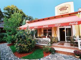 Hotel Photo: Penzion Tilia