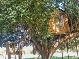 Hotel photo: Guru's Treehouse