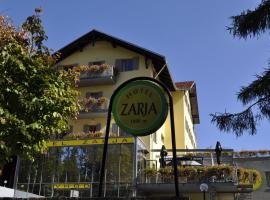 Hotel Photo: Hotel Zarja