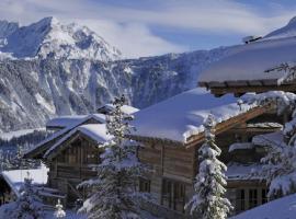 Hotel photo: Provenche ski-in ski-out Apartment Courchevel