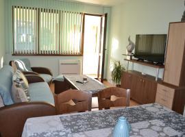 Hotel photo: Апартамент МИГ