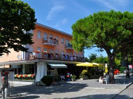 Hotel Photo: Albergo Rosa
