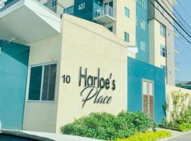 Hotel photo: Harloe's Place
