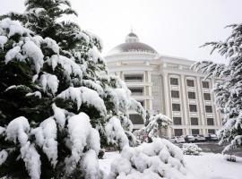 Hotel photo: Shamakhi Palace Sharadil