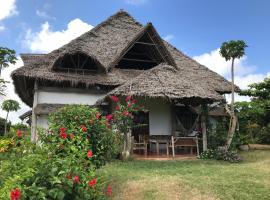 Hotel photo: Ras Nungwi Breezes