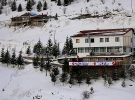 Hotel photo: Snow Patrol Lodge