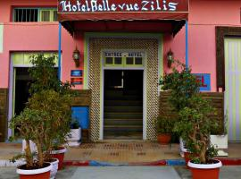 Hotel photo: Hotel Belle Vue Zillis