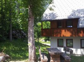 صور الفندق: Apartments Lake Bohinj
