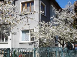Hotel photo: Guest House Minkovi