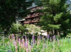 A picture of the hotel: Hotel Alpina
