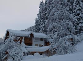 Hotel photo: Bam Nebanauer