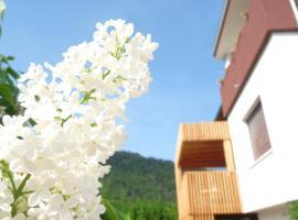 Hotel Photo: B&B Casa sul Lago - Appartamenti