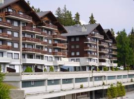 Hotel Photo: Immeuble Les Mélèzes