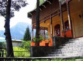 Hotel photo: Casa Frasin