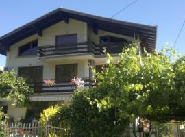Hotel Photo: Slavina Guest House