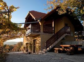Hotel photo: Vineyard Cottage Brodaric