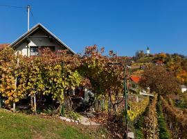 A picture of the hotel: Vineyard Cottage Vercek