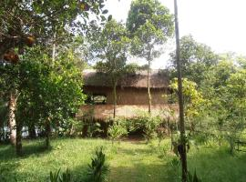 Hotel photo: Neptune Adventure - Tatai River Bungalows