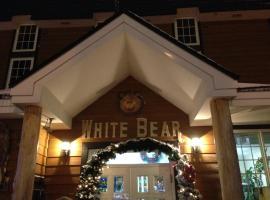 Hotel Photo: Pension New White Bear