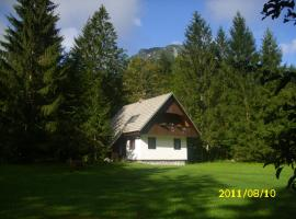 صور الفندق: Rooms and Apartments Lake Bohinj