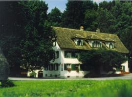 Hotel Photo: Hotel Krone Sihlbrugg