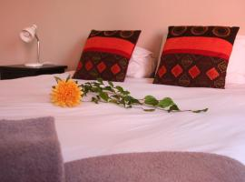 Hotel photo: Dunedin Star Guesthouse