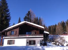 Hotel photo: Fichtenblockhütte