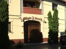 Hotel foto: Mátyás Panzió