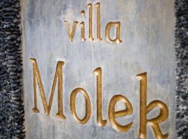 Hotel photo: Villa Molek