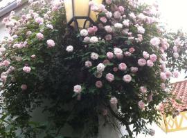 Hotel photo: Patio das Flores