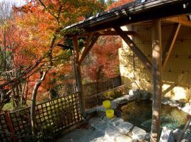Hotel Photo: Sawatari Onsen Miyataya Ryokan