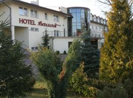 Hotel photo: Hotel Ambasador Chojny