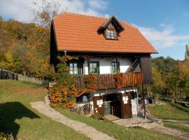 Hotel photo: Country house Etno kuća pod Okićem