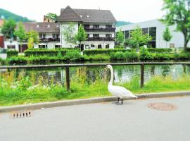Hotel Photo: Hotel Schiff Nagold