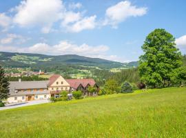 Hotel photo: Gasthof Wiesenhofer