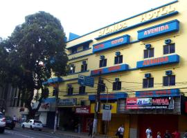 A picture of the hotel: Hotel Novo Avenida