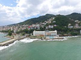 Фотографія готелю: Anemon Ordu