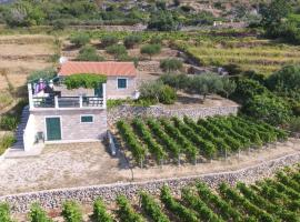 A picture of the hotel: Holiday Home Vineyard house