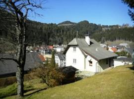 Hotel photo: Ferienhaus im Joglland