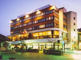 Hotel Photo: Parkhotel David