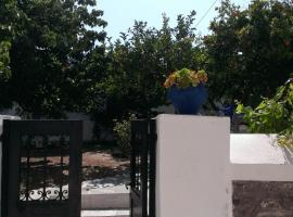 Hotel photo: Alexandros House