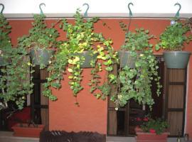Hotel photo: Casa San Bartolome