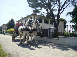 A picture of the hotel: La Siesta