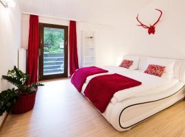Hotel photo: W & S Executive Apartments - Hallstatt I