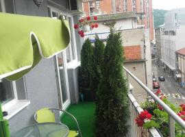 A picture of the hotel: House Prljevic
