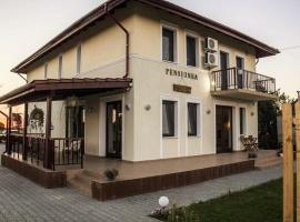 A picture of the hotel: Pensiunea Rustic