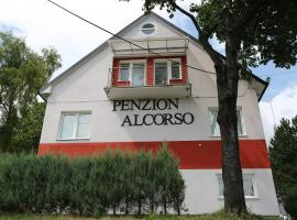 Hotel photo: Al Corso Pension