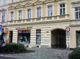 A picture of the hotel: Ana Apartments Karlovy Vary
