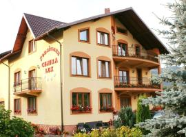 Hotel photo: Pensiunea Cemira Lux