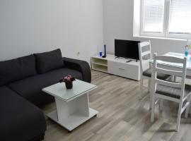 A picture of the hotel: Filipche Apartment